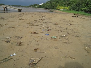 Debris washed on shore.  Project AWARE actively supports cleaning up trash.