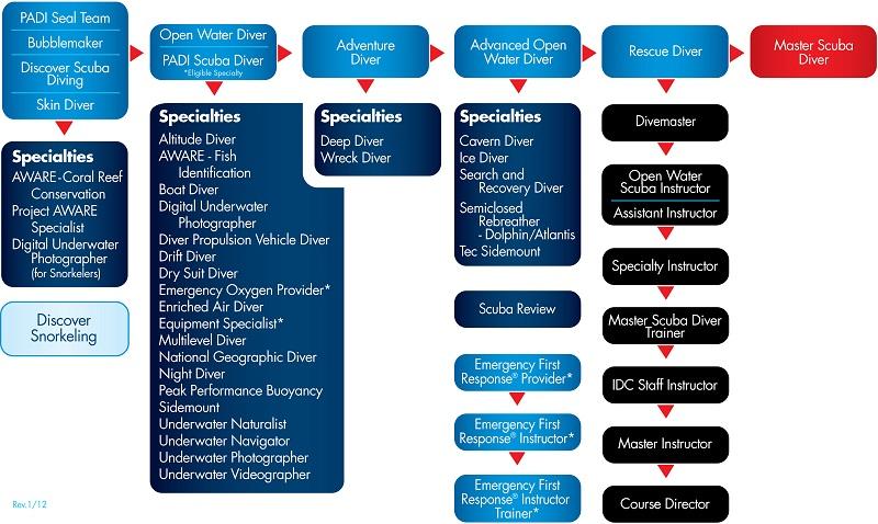 10 steps to padi master instructor rh webscuba net Padi Instructor Development Course PADI Instructor List