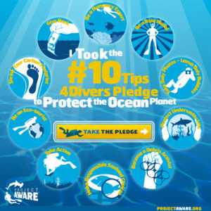 Project AWARE's #10Tips4Divers